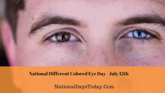 National Different Colored Eye Day